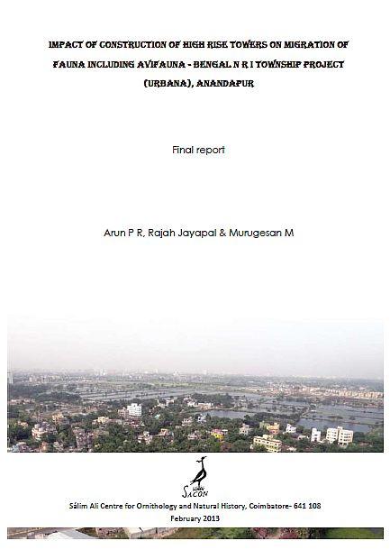 2013-02 UrbanaRep