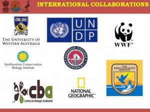Collaboration_InterNational