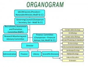 OrganogramT
